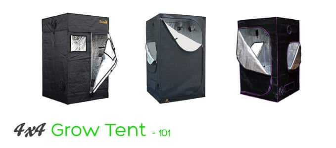 4 x 4 grow tent reviews 101  sc 1 st  Plantsily & 4×4 Grow Tent Setup and Review u2013 All You Need to Know! | PlantsILY