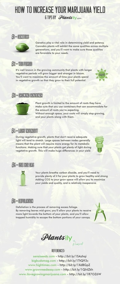 How to increase yield - infographic