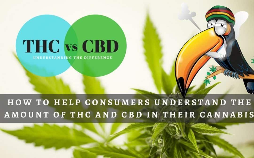 How to Help Consumers Understand the Amount of THC and CBD in Their Cannabis