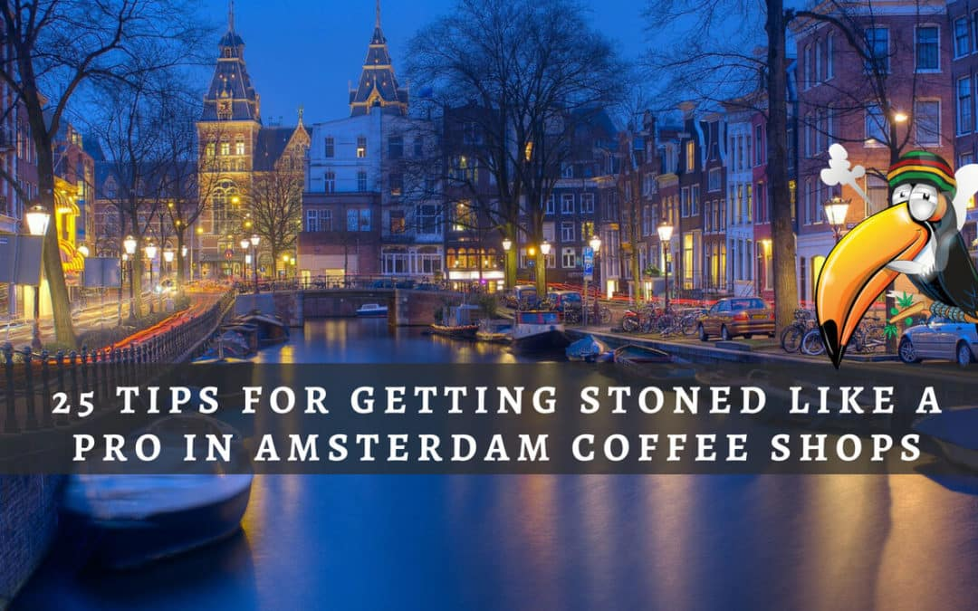25 Tips for Getting Stoned Like a Pro in Amsterdam Cannabis Coffee Shops