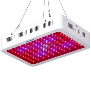Galaxyhydro LED 300w Led Grow Light