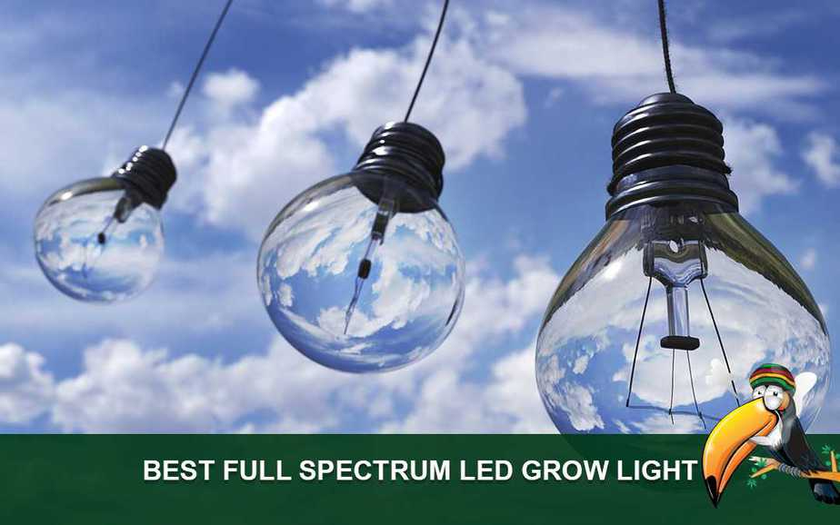 Best LED Full Spectrum Grow Light