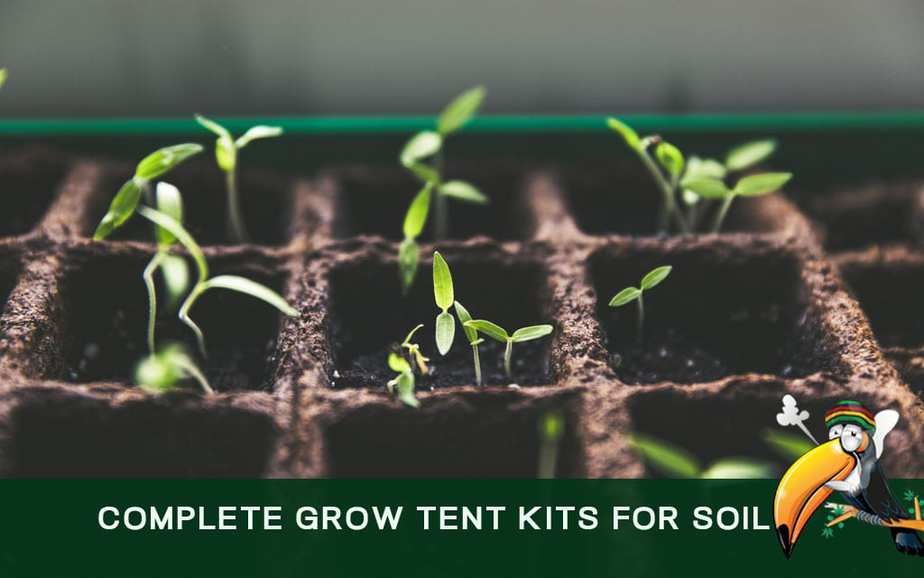 Complete Grow Tent Kits For Soil Planting Indoors