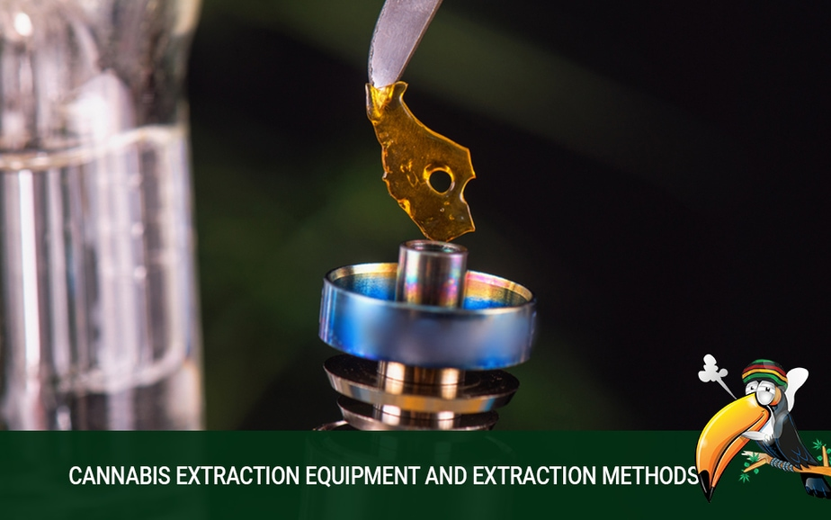 Next Step Processing: Cannabis Extraction Equipment and Extraction Methods