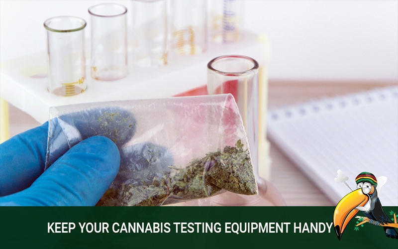Why You Should Have a Cannabis Testing Equipment
